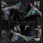 Synths and Notes 34 by Various Artists