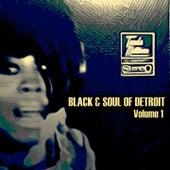 Black & Soul of Detroit, Volume 1 de Various Artists