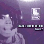Black & Soul of Detroit, Volume 2 de Various Artists