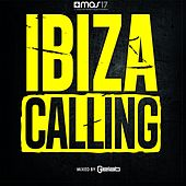 Ibiza Calling von Various Artists