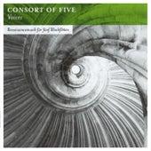 Voices (Renaissancemusik für fünf Blockflöten) by Consort of Five