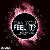 Can You Feel It?, Vol. 3 (Compiled By Baramuda) by Various Artists