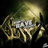 Born to Rave, Vol. 2 von Various Artists