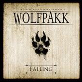 Falling by Wolfpakk