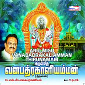 Arulmigu Vanabadrakaliamman Thirunamam by S.P. Balasubrahmanyam