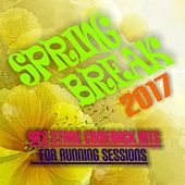 Spring Break 2017: 90S Stars Comeback Hits for Running Sessions by Various Artists