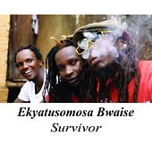 Ekyatusomosa Bwaise de Survivor