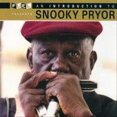 An Introduction To Snooky Pryor de Snooky Pryor