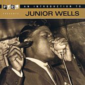 An Introduction To Junior Wells by Junior Wells