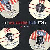 The USA Records Blues Story by Various Artists