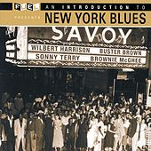 An Introduction To New York Blues by Various Artists