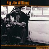 Absolutely The Best: Big Joe Williams by Various Artists