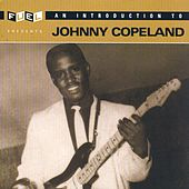 An Introduction To Johnny Copeland by Johnny Copeland