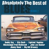 Absolutely The Best Of Blues Volume 2 von Various Artists