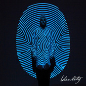 Identity (Deluxe Edition) by Colton Dixon