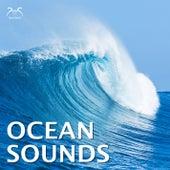 Ocean Sounds de Nature Relaxation TA