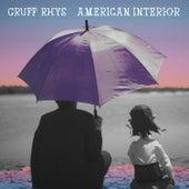 American Interior von Gruff Rhys
