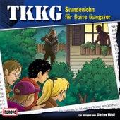 131/Stundenlohn für flotte Gangster von TKKG
