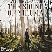 The Sound of Yiruma von David de Miguel