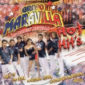 Hot Hits de Grupo Maravilla
