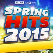 Spring Hits (2015) de Various Artists