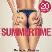 Summertime (The Sound of Summer) von Various Artists
