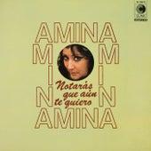 Notarás que aún te quiero von Amina