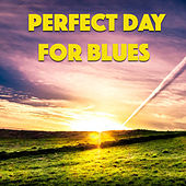 Perfect Day For Blues Music de Various Artists