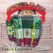Tributo Al Rey: Las 15 Grandes by Ramon Ayala