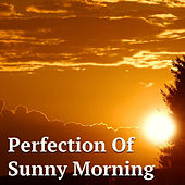 Perfect For Sunday Morning von Various Artists