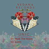 Walk the Moon by Unic