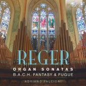 Reger: Organ Music by Adriano Falcioni