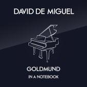 In A Notebook by David de Miguel