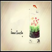 Norouz Collection 96 by Various Artists