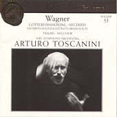 Gotterdammerung / Siegfried by Richard Wagner