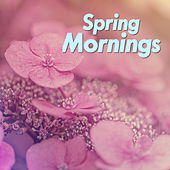 Spring Mornings by Various Artists