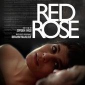 Red Rose (Bande originale du film) von Ibrahim Maalouf