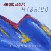 Hybrido - From Rio to Wayne Shorter de Antonio Adolfo
