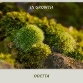 In Growth by Odetta