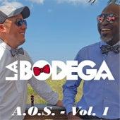 A.O.S, Vol. 1 by Bodega