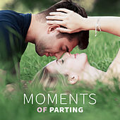 Moments of Parting - Everyone Knows, Strangers and Loving, Beautiful Looks, Passionate Kisses, Romantic Gestures, Sensual Touch by Jazz for Wine Tasting