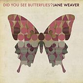 Did You See Butterflies? by Jane Weaver