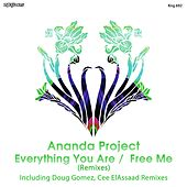 Everything You Are / Free Me (Remixes) by Ananda Project