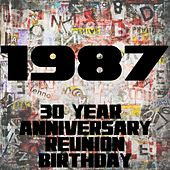1987 (30 Year Anniversary Reunion Birthday) by Various Artists