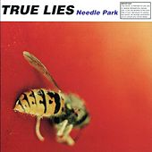 Needle park by True Lies