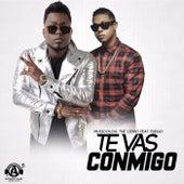 Te Vas Conmigo (feat. Fuego) de Musicologo The Libro