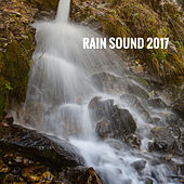 Rain Sound 2017 by Various Artists