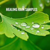 Healing Rain Samples by Various Artists