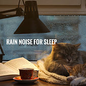 Rain Noise for sleep by Various Artists