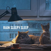 Rain Sleepy Sleep by Various Artists